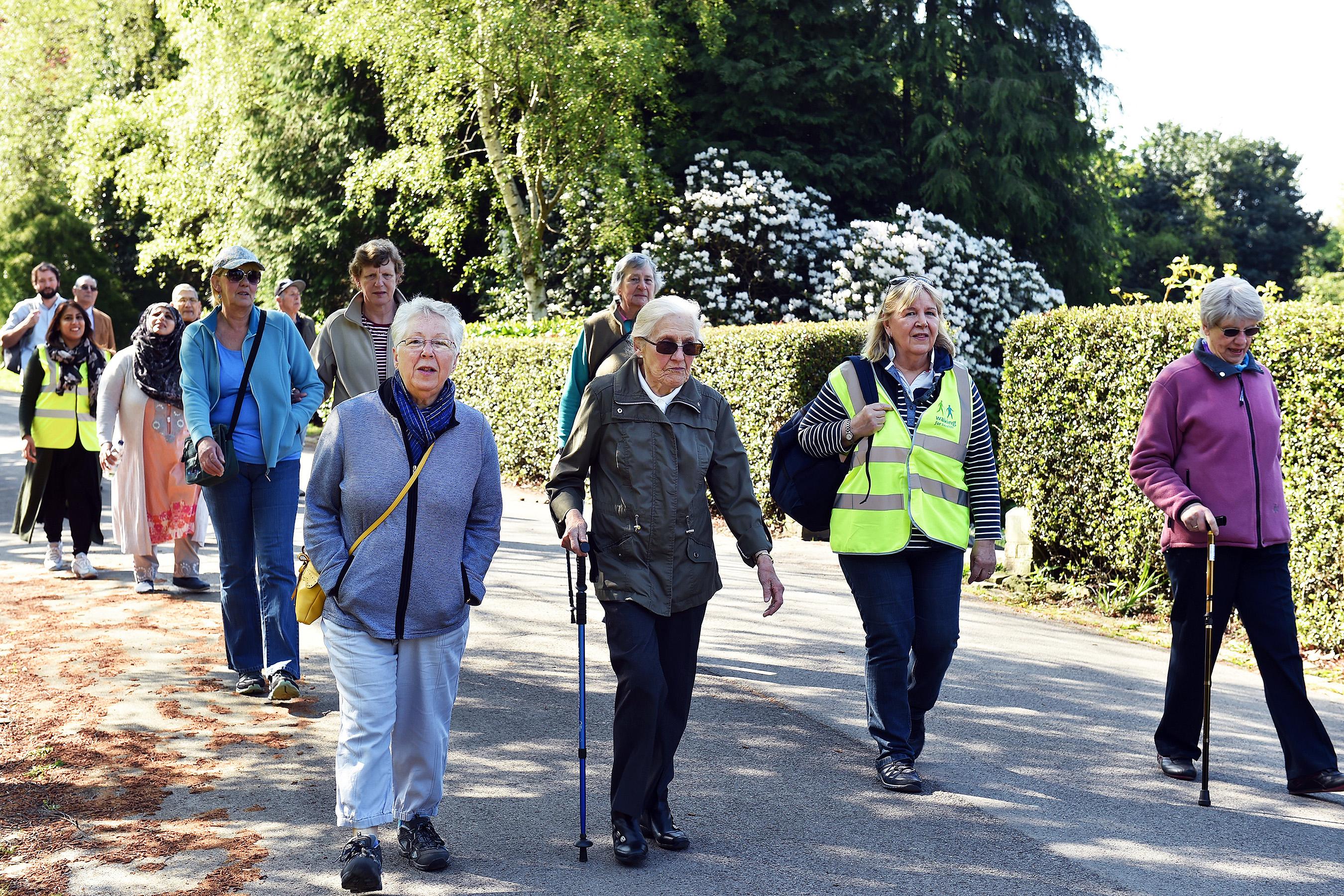 Walking for Health - Kelsey Park & Harvington Woods